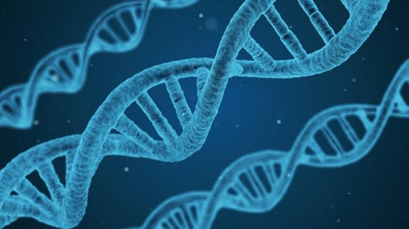 Scientists develop first-ever inexpensive paper test that detects diseases from DNA