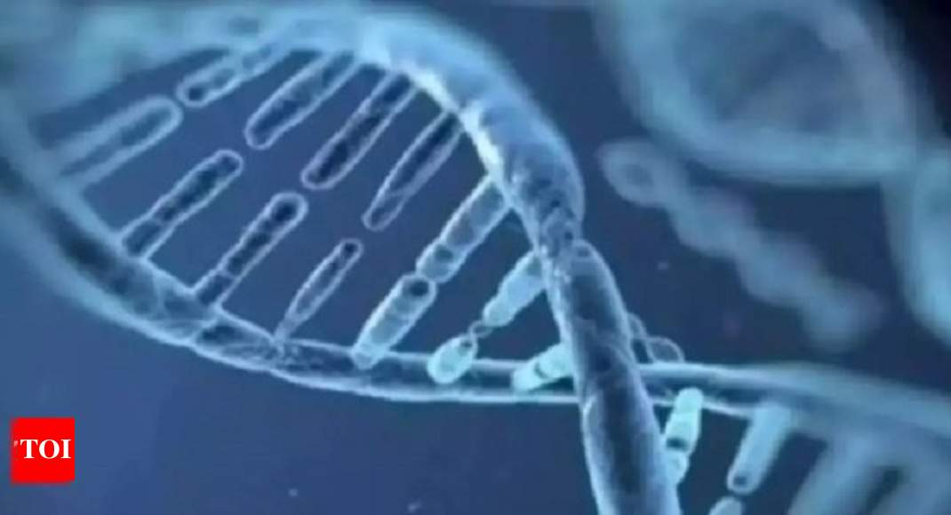 DNA test on girl to decide fate of Maharashtra sarpanch