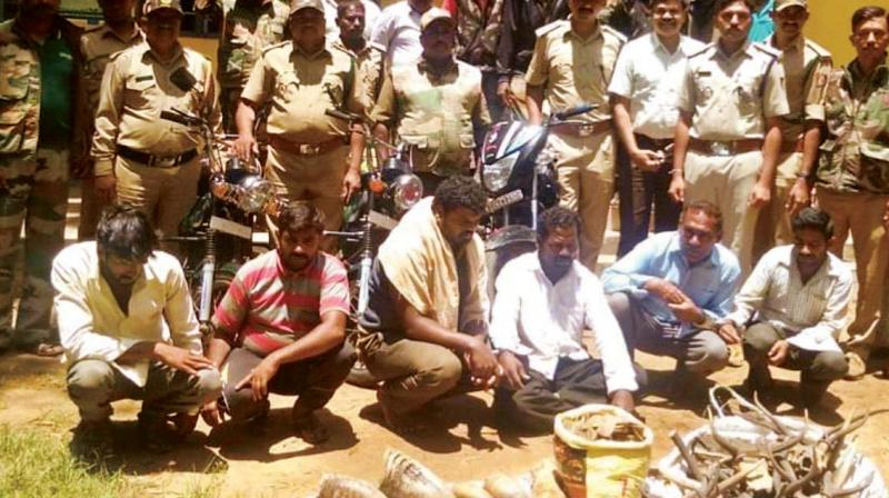 6 poachers with links to smugglers arrested in Chikkamagaluru