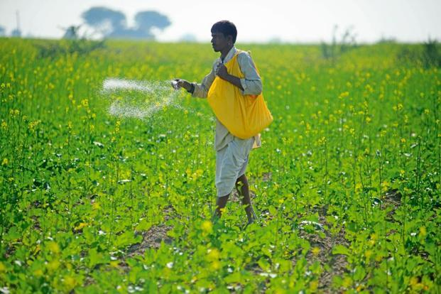 Everstone-backed Crystal Crop said its acquisitions will help it strengthen its insecticide and herbicide portfolio. Photo: Pradeep Gaur/Mint.
