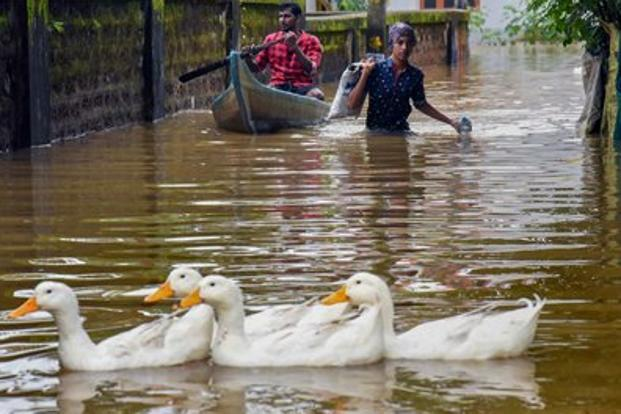 Due to flooding and bad weather in Kerala, telecom players are also trying to ensure that their network availability does not suffer. Photo: PTI