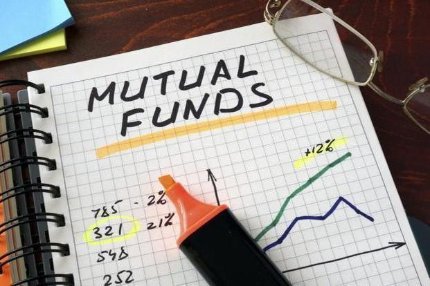 The return advantage shows in large-cap funds if you pick good managers and remain invested through cycles. Photo: iStock