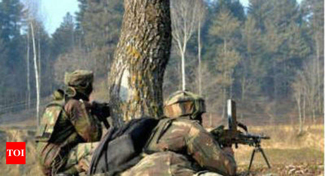 2 Pak soldiers killed in 'calibrated' LoC op