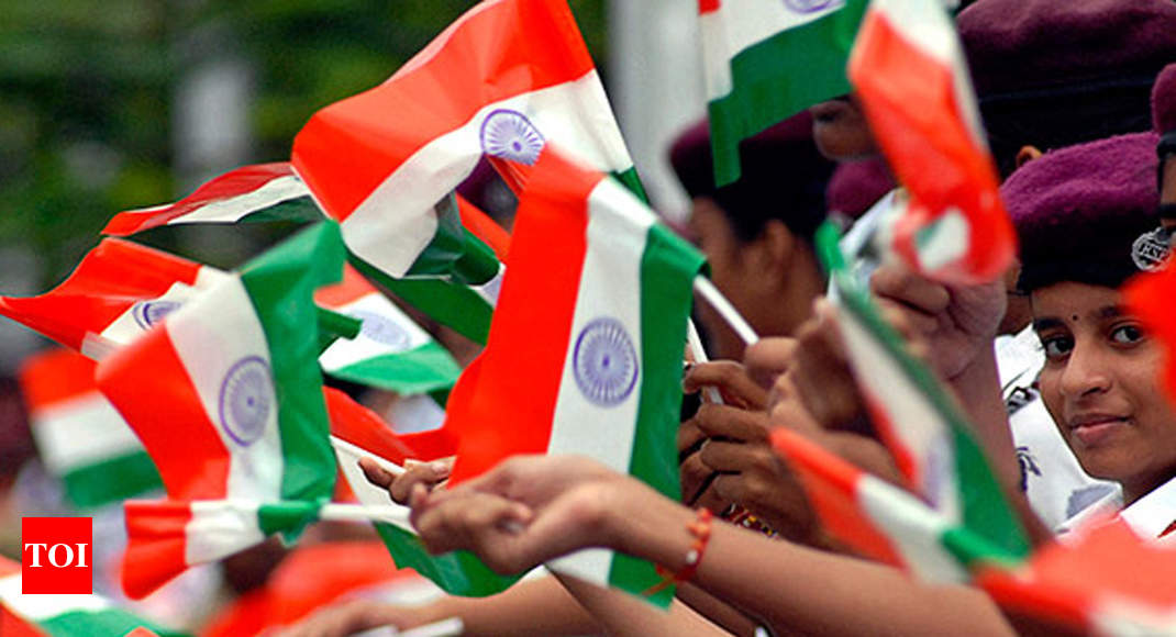 Govt asks citizens not to use national flags made up of plastic